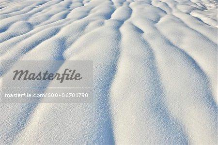 Snowy Hillside in Winter, Spiegelau, Bavarian Forest National Park, Bavaria, Germany