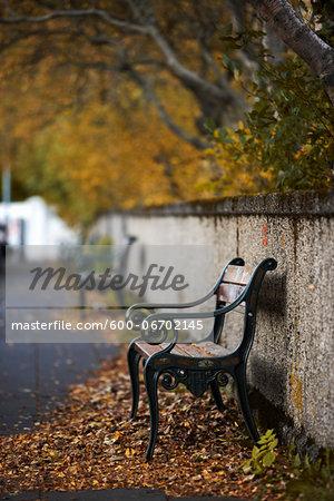 Empty bench at autumn in Reykjavik, Iceland.