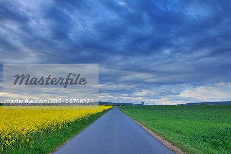 Road through Fields, Grossostheim, Bachgau, Bavaria, Germany