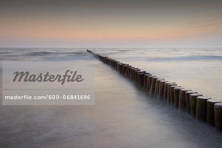 Groyne before sunrise, Zingst, Darss, Fischland-Darss, Baltic sea, Mecklenburg-Western Pomerania, Germany, Europe