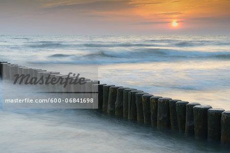 Groyne at Sunrise, Zingst, Darss, Fischland-Darss, Baltic sea, Mecklenburg-Western Pomerania, Germany, Europe