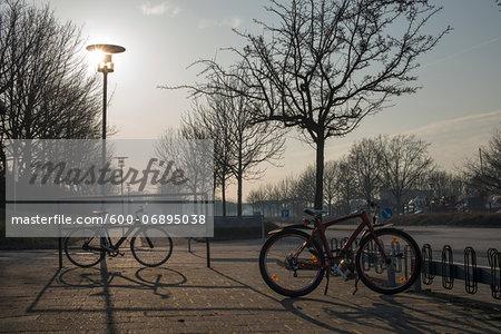 Parked Bikes on Winter Afternoon, Copenhagen, Denmark