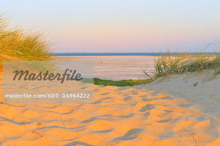 Path to North Sea, Sandbank, Kniepsand, Summer, Wittduen, Amrum, Schleswig-Holstein, Germany