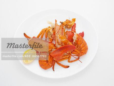 Leftovers of Lobster Dinner, Studio Shot