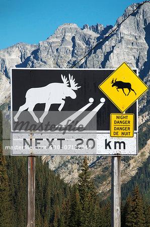 Moose crossing, warning sign, British Columbia interior, B.C., Canada