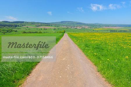 Field Path through Meadow in Spring, Grebenhain, Hesse, Germany