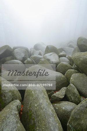 Close-up of rocks, popular destination, Felsenmeer, Odenwald, Hesse, Germany, Europe