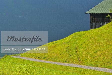 Trail in Mountains in Summer, near Hirschegg and Mittelberg, Kleinwalsertal, Alps, Vorarlberg, Austria
