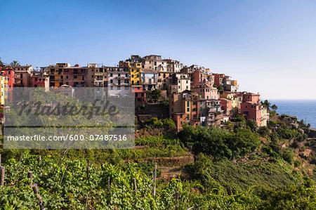 Corniglia on top of Promontory, Cinque Terre, La Spezia District, Italian Riviera, Liguria, Italy