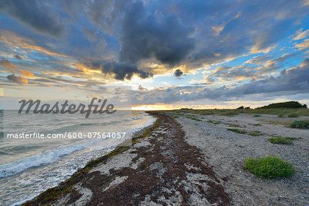 Fluegger Beach in summer, Baltic Sea, Baltic Island of Fehmarn, Schleswig-Holstein, Germany