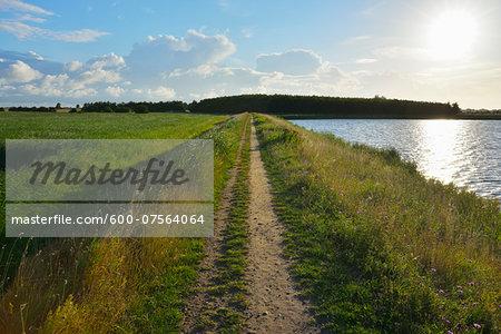 Dike Path at Fluegger Watt with Sun, Baltic Island of Fehmarn, Schleswig-Holstein, Germany