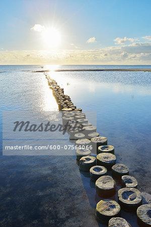 Wooden Breakwater with Sun, Prerow, Darss, Fischland-Darss-Zingst, Baltic Sea, Western Pomerania, Germany
