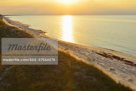 Baltic Sea Beach at Sunset, Summer, Zingst, Darss, Fischland-Darss-Zingst, Baltic Sea, Western Pomerania, Germany