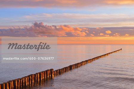 Groyne at Sunrise, Baltic Sea, Zingst, Darss, Fischland-Darss-Zingst, Mecklenburg-Western Pomerania, Germany