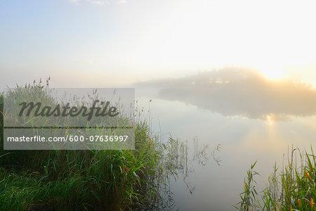 Lake at Sunrise on Misty Morning, Fischland-Darss-Zingst, Mecklenburg-Western Pomerania, Germany