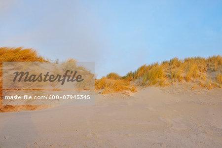 Sand Dunes, Helgoland, Dune, North Sea, Island, Schleswig Holstein, Germany