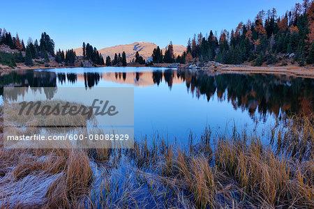 Laghi di Colbricon in Autumn, Passo Rolle, Parco Naturale Paneveggio Pale di San Martino, Trento District, Trentino-Alto Adige, Dolomites, Alps, Italy