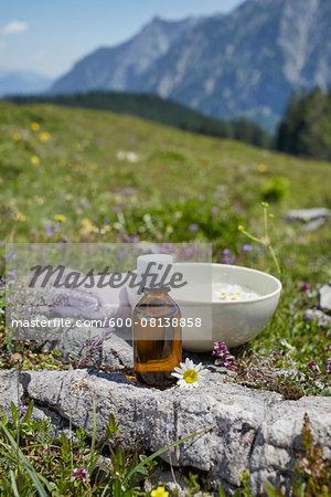 Homeopathic Medicine and Chamomile, Strobl, Salzburger Land, Austria