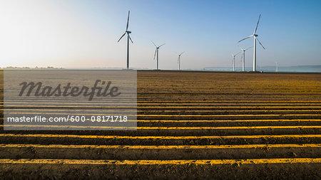 Wind turbines in crop field, Germany