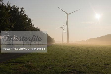 Wind Turbines in Morning Mist, Halle Westfalen, Gutersloh, North Rhine-Westphalia, Germany