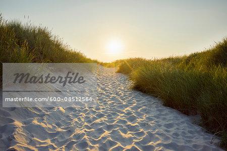 Sandy Path through the Dunes at Sunset to the Beach, Bunken, Aalbaek Bay, Baltic Sea, North Jutland, Denmark