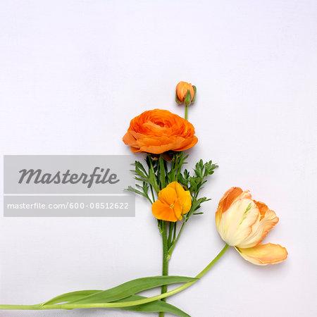Cut Orange Flowers, Ranunculus, Pansy and Tulip