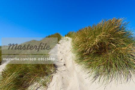Path through Dunes to Beach, Klitmoller, North Jutland, Denmark