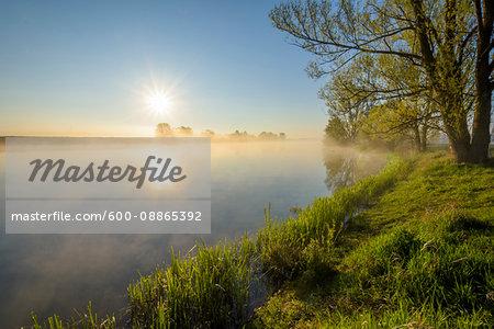 Lakeside with Sun and Morning Mist, Streudorf, Lake Altmuhlsee, Weissenburg-Gunzenhausen, Bavaria, Germany