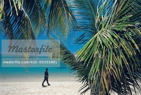 Mauritius Island, Great Bay