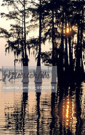 United States, Louisiana, Atchafalaya River