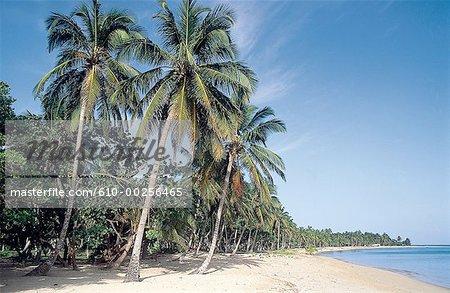 Dominican Republic, Las Terranas beach