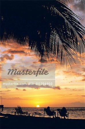 French Polynesia, Moorea island, sunset