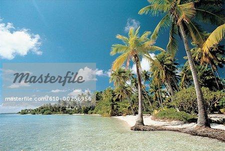 French Polynesia, Tahiti island
