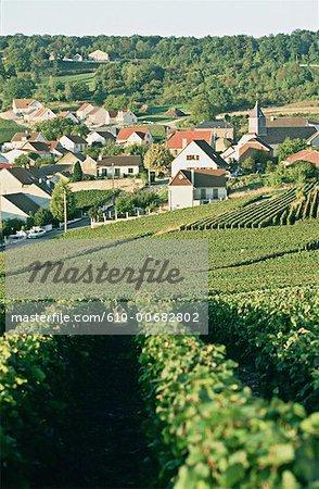 France, Champagne region, Champignol, vineyard and village