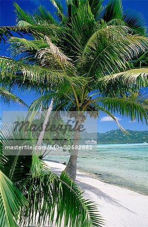French Polynesia, Windward islands, cruise