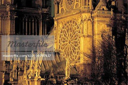 France, Paris, Notre Dame de Paris, rosette