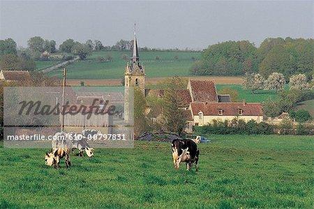 France, Normandy, Perche, Dame-Marie
