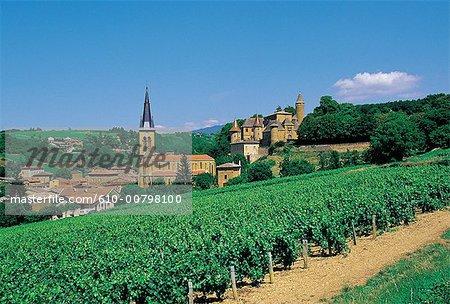 France, Beaujolais region, Jarnioux