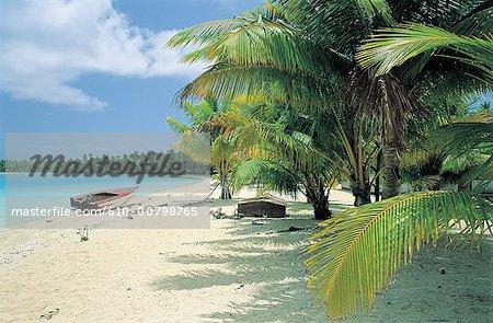 French Polynesia, Tuamotus, beach