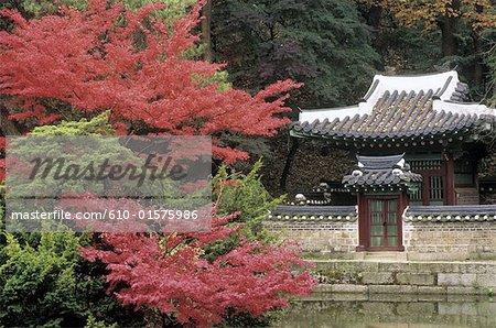 South Korea, Seoul, Changdokkung Palace, the secret garden