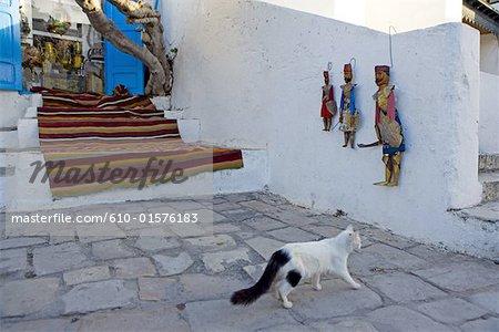 Tunisia, Sidi Bou Said, cat in a lane and puppets
