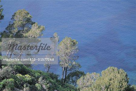 Spain, Balearic Islands, Majorca, Na Foradada, coastal landscape