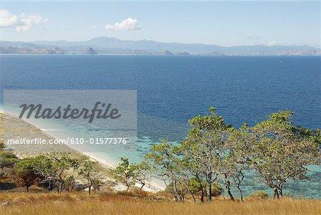Indonesia, Flores, Lubuanbajo bay, Pulau Sebolan