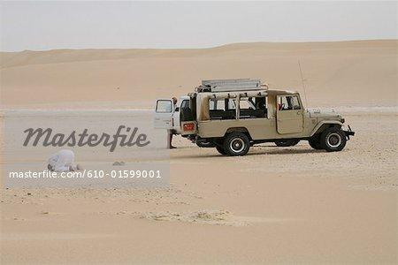 Egypt, Libyan desert, near Siwa Oasis, The great sand sea, 4x4