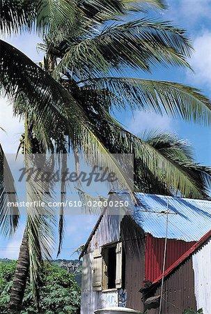 Mauritius, Rodrigues, Port-Mathurin, local corrugated house