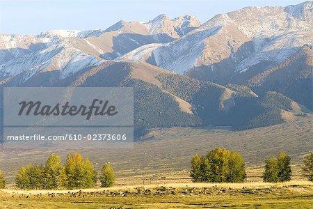 China, Xinjiang, north of Hami