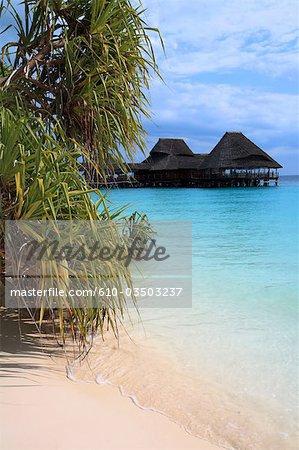 Tanzania, Zanzibar (Unguja island), Kwenda beach, hotel and mangrove.