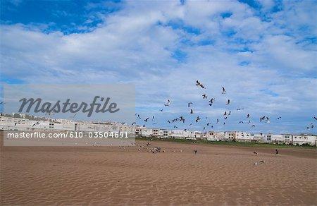 Morocco, Tangier, beach