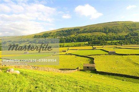 England, Yorkshire Dales, Swaledale