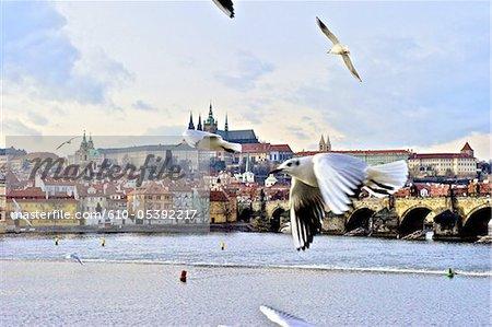 Czech Republic, Prague, Charles bridge and Saint Vitus cathedral
